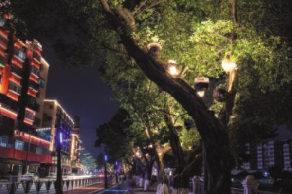 园林楼宇照明亮化